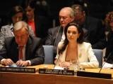 سیاسی عزم کی کمی شام کے مسئلے کے حل نہ ہونے کی وجہ ہے، انجیلینا جولی ۔ فوٹو: فائل