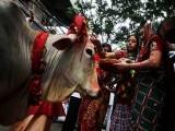 کریک ڈاؤن بھارتی پالیسیوں میں ہندوقوم پرستوں کے اثر ورسوخ کابھی ثبوت ہے۔ فوٹو: فائل