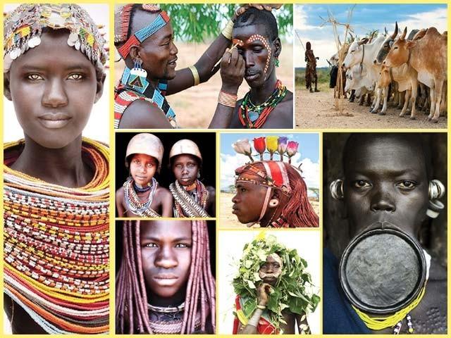 7برس تک افریقی جنگلوں کی خاک چھاننے والے جرمن فوٹوگرافر کے دلچسپ مشاہدات کی روداد ۔  فوٹو : فائل