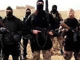 ہمارے پاس بے شمار مثالیں ہیں جن میں یہ بات ثابت ہوئی کہ داعش نے بم دھماکوں میں کیمیکل ہتھیار استعمال کیے، ڈائریکٹر، فوٹو؛فائل