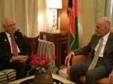 افغانستان اپنی سرزمین پاکستان کے خلاف استعمال نہ ہونے دے، سرتاج عزیز کا اشرف غنی سے مطالبہ۔ فوٹو: پاکستان دفتر خارجہ