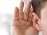 فولاد کی کمی سے کان کے اندر خون کی باریک باریک رگیں متاثر ہوتی ہیں، ماہرین، فوٹو؛ فائل