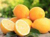 لیموں کی کچھ مقدارکو اپنے کھانے میں شامل کرنے سے وزن میں کمی لائی جاسکتی ہے، ماہرین: فوٹو: فائل