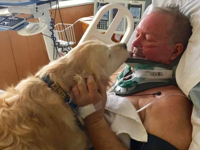 بوب کی کتیا کیلسی ہسپتال میں ان کی خبرگیری کرتےہوئے۔ فوٹو: بشکریہ مشی گن ٹائمز