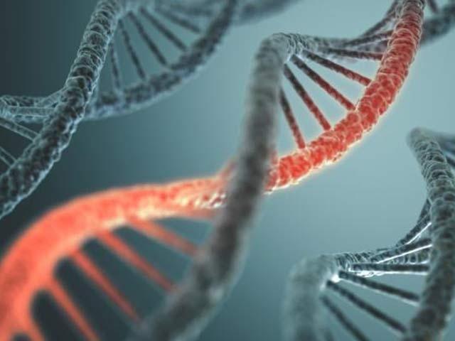 ایک طویل مطالعے کے بعد بچوں میں پیدائشی امراض کی وجہ بننے والے نئے جین دریافت ہوئے ہیں۔ فوٹو فائل