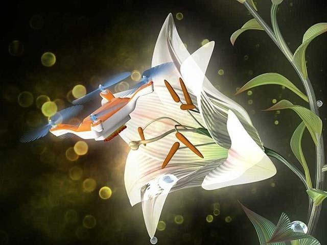 ڈرون ٹیکنالوجی کے ذریعے بہت جلد فصلوں کی زرخیزی بڑھانے کا کام لیا جاسکے گا۔ فوٹو: بشکریہ ڈیلی میل