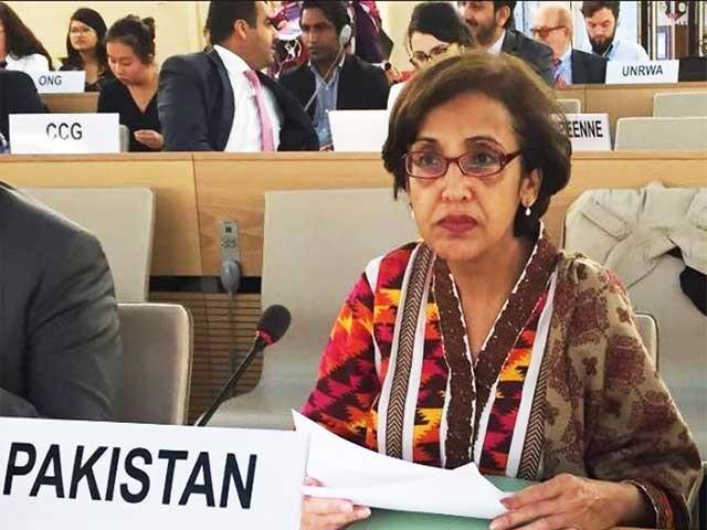 تہمینہ جنجوعہ جنیوا میں پاکستان کی مستقل مندوب کی حیثیت سے فرائض انجام دے رہی ہیں۔ فوٹو؛ فائل