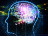 جی پی ایس ٹریکر جیسی سہولیات دماغ کے یادداشت والے حصے کی سرگرمی کو ختم کردیتی ہیں، ماہرین، فوٹو؛ فائل