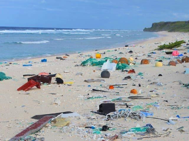 ہینڈرسن جزیرے پر موجود کوڑے کا ایک منظر۔ فوٹو: بشکریہ جینیفر لیورز یونیورسٹی آف تسمانیہ
