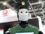 دبئی روبوٹ پولیس اہلکار کو آئی بی ایم اور گوگل کی مدد سے تیار کیا گیا ہے۔ فوٹو: بشکریہ دوبئی پولیس