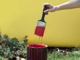 امریکی ریاست کینٹکی میں گھریلو لان میں سرخ رنگ کرنے کی ممانعت ہے۔ فوٹو: فائل