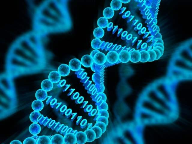 ہارورڈ یونیورسٹی نے ای کولائی بیکٹیریا کے ڈی این اے میں وڈیو معلومات اسٹور کرنے اور حاصل کرنے کا کامیاب تجربہ کیا ہے۔ فوٹو: فائل