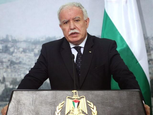 فلسطین کو تسلیم کرنیوالے 148ملکوں کی حمایت پر ہی نہیں رکنا چاہیے بلکہ اس میں دیگر ممالک کا بھی اضافہ کرنا چاہیے۔ فوٹو: نیٹ