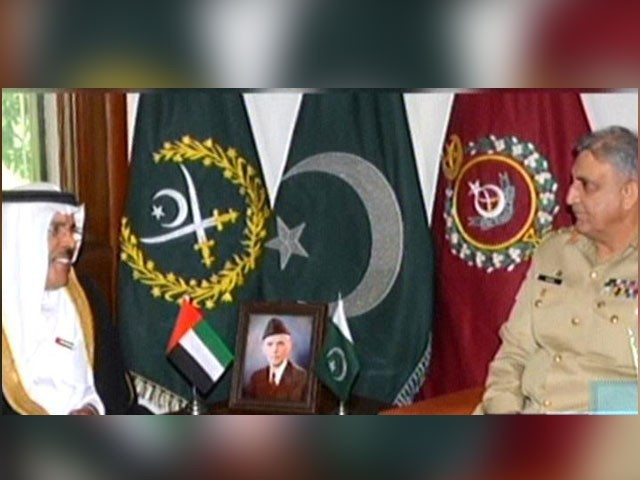خطے میں امن و استحکام کے لیے پاکستان کا کردار قابل قدر ہے، اماراتی سفیر- فوٹو: اسکرین گریب