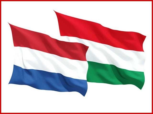 ڈچ سفیر گاجس شیلٹیما نے ہنگری میں کرپشن اور میڈیا پر پابندیوں پر بھی خدشات کا اظہار کیا تھا۔ فوٹو: فائل