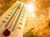 شمالی گرم ہوائیں شہر میں چلنے والی سمندری ہواؤں کو روک رہی ہیں، محکمہ موسمیات۔ فوٹو:فائل