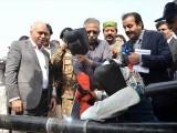 گورنر سندھ نے افتتاحی تختی کی نقاب کشائی کی۔ فوٹو : اے پی پی