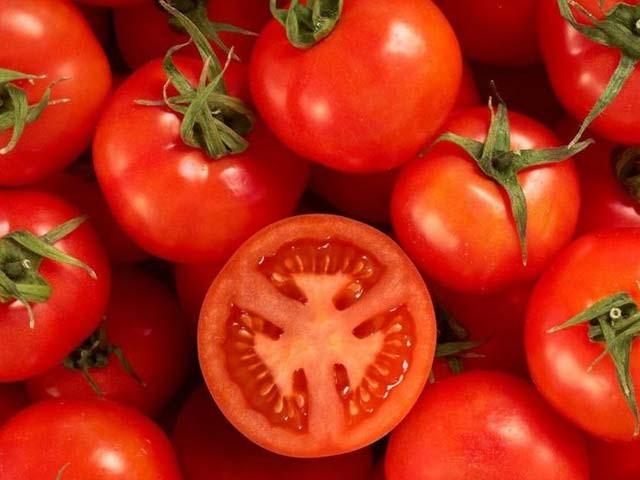 تمباکو نوشی سے پھیپھڑوں کو پہنچنے والا نقصان محض ٹماٹر کھا کر دور کیا جاسکتا ہے،تحقیق۔ فوٹو: فائل