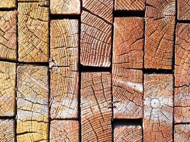 میری لینڈ یونیورسٹی کے ماہرین نے لکڑی کو ٹھوس اور مضبوط بنانے کا ایک انقلابی طریقہ دریافت کیا ہے۔ فوٹو: فائل