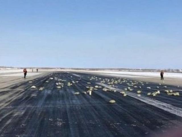 قیمتی دھاتوں کی اینٹیں طیارے سے زمین پر آن گریں۔ فوٹو:  یاکوتو میڈیا