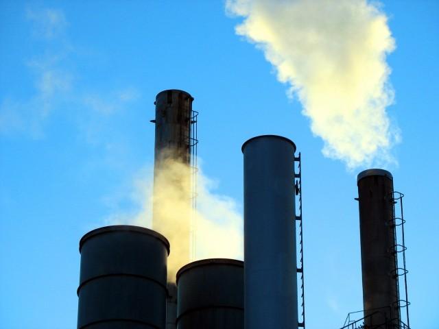 کاغذ،فارما،ٹیکسٹائل،انجینئرنگ سیکٹرکی بھی ترقی،کیمیکل،کھاد،چمڑے اور لکڑی کے شعبے سکڑگئے۔ فوٹو: فائل