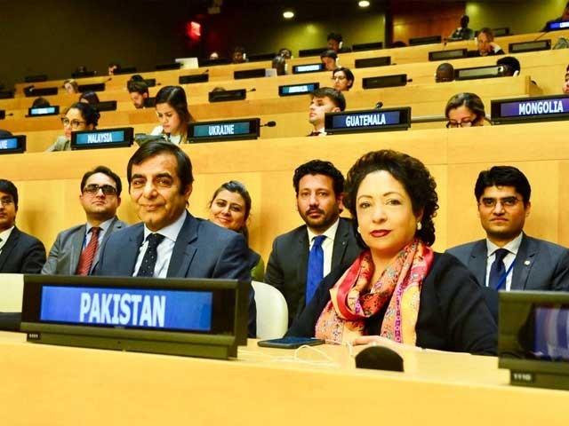 پاکستان کی کامیابی عالمی برادری کے اعتماد کا اظہار ہے، ملیحہ لودھی فوٹو: ٹوئٹر
