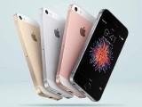 کئی ویب سائٹس نے خبردی ہے کہ آئی فون سال کے وسط تک کم ازکم 10 نئے سستے ماڈل متعارف کرائے گا۔ فوٹو: فائل