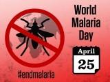 ہر سال 25 اپریل کو ملیریا کا عالمی دن منایا جاتا ہے۔ (فوٹو: سوشل میڈیا)
