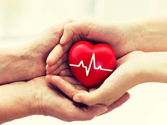 غذائیں قلبی صحت کے لیے مؤثر کردار ادا کرسکتی ہیں۔ فوٹو: فائل