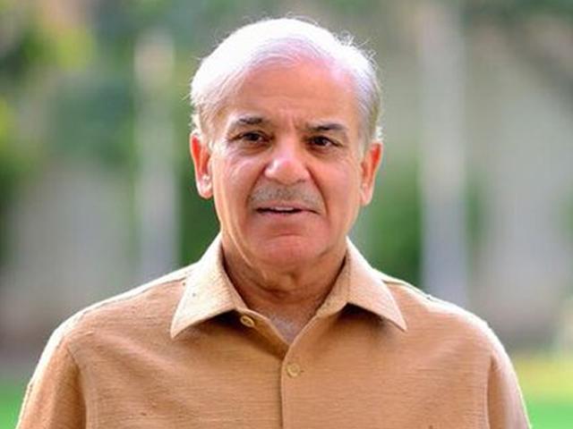 نیازی صاحب نے 5 سال میں خیبرپختونخوا کو تباہ کر دیا، شہباز شریف۔ فوٹو : فائل