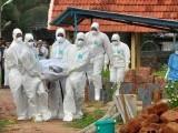 نیفا وائرس سے ہلاک ہونے والے افراد کی میتوں کو حفاظتی اقدامات کے ساتھ منتقل کیا جا رہا ہے۔ فوٹو : بھارتی میڈیا