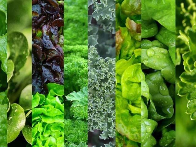 سبز پتوں والی سبزیاں دماغ کی بہترین محافظ ہوتی ہیں۔ فوٹو: فائل