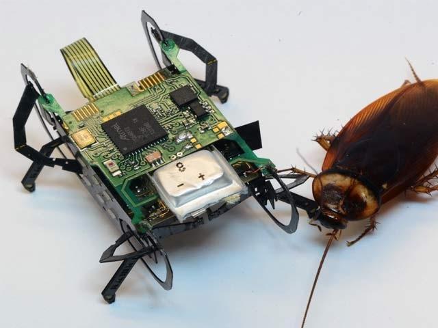 ایچ اے ایم آر روبوٹ فزکس کے اصولوں پر بنایا گیا ہے۔ فوٹو: بشکریہ ہارورڈ یونیورسٹی