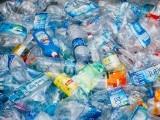 پلاسٹک میں پایا جانے والا عام کیمیکل، فیلیٹ دماغ کے لیے مضر قرار۔ فوٹو: فائل