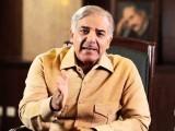 شیر پر مہر لگائیں اور ووٹ کی طاقت سے ان سب ہتھکنڈوں کو ناکام بنا دیں، صدر مسلم لیگ (ن)
