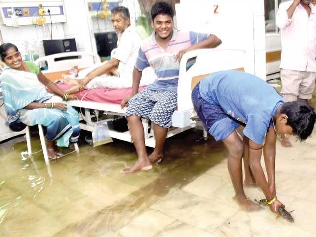 مریضوں کے ساتھ موجودتیماردار مچھلیاں پکڑنے لگ گئے جبکہ مریض بھی محظوظ ہوتے رہے۔ فوٹو: سوشل میڈیا