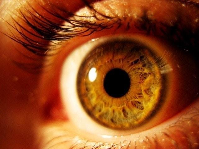 پاکستان میں دریافت شدہ ایک نیا جین آنکھوں کے ڈولوں کو تباہ کرکے اندھے پن کی وجہ بن رہا ہے۔ فوٹو: فائل