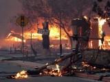 آگ نے شوبز ستاروں کے جنگل میں سیاحتی رہائشی علاقے کو بھی لپیٹ میں لے لیا (فوٹو: اے ایف پی)