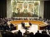 سلامتی کونسل مفلوج ہوچکی ہے اور کشیدگی ختم کرنے کی ذمے داری نبھانے سے قاصر ہے، فلسطینی مندوب فوٹو:فائل