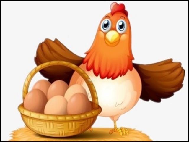 بعض لوگ اعتراض کر رہے ہیں کہ دیسی انڈوں اور مرغیوں سے معیشت کو کیسے سہارا دیا جا سکتا ہے۔ فوٹو: انٹرنیٹ