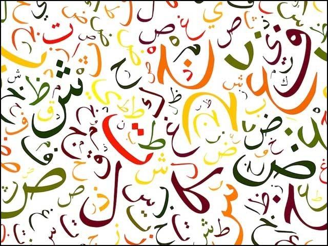 ہمیں اپنی تقدیر بدلنی ہے تو اردو زبان کو فروغ دینا ہوگا۔ فوٹو: انٹرنیٹ
