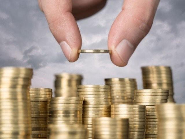 ودہولڈنگ میں چھوٹ پر ابہام ہے، اینٹ مہنگی ہو چکی، فائزہ امجد۔  فوٹو : فائل