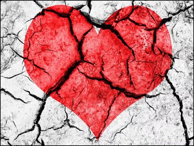 اگر آپ یہ سب انجام بھگتنے کو تیار ہیں تو شوقِ محبت فرمائیے، لیکن پھر ہم سے شکایت نہ کیجیے گا کہ خبردار نہیں کیا۔ (فوٹو: انٹرنیٹ)