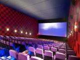 بھارتی حکومت نے پاکستانی فنکاروں کی بھارتی فلموں میں اداکاری پر پابندی عائد کردی۔ فوٹو: فائل