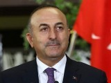 مسئلہ کشمیرسلامتی کونسل کی قراردادوں کے مطابق حل ہونا چاہئے، ترک وزیرخارجہ۔ فوٹو:فائل