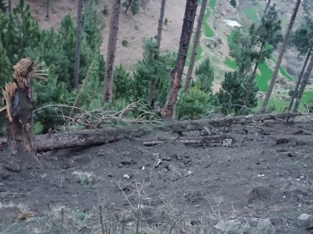 بھارت نے پے لوڈ جنگلات میں گراکر پاکستان کے ماحولیاتی اثاثوں کو نقصان پہنچایا، ڈوزیئر۔ فوٹو : فائل