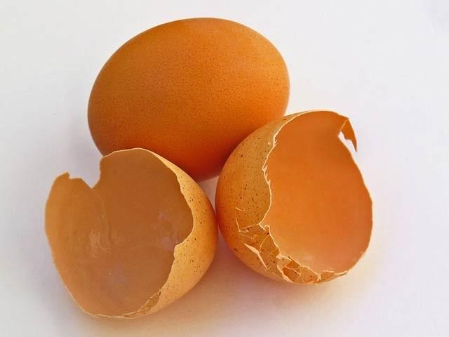 بین الاقوامی ماہرین کی ٹیم نے انڈے کے چھلکے سے بیٹری بنانے کا کامیاب تجربہ کیا ہے (فوٹو: فائل)