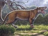 شیر کی ہڈیوں کو دیکھتے ہوئے ایک مصور نے اس کی یہ تصویر بنائی ہے جو دو کروڑ برس قبل کینیا میں پایا جاتا تھا اور اس کا وزن 1500 کلوگرام تھا۔ فوٹو: اے ایف پی ، موریسیو اینٹون