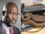 صدارتی دفتر میں خطرناک سانپ کے چھپے ہونے کے باعث صدر کو دفتر آنے سے منع کردیا گیا تھا۔ فوٹو : فائل