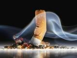 شراب نوشی اور تمباکونوشی سے ہڈیوں کی کمزوری اور گھٹیا کا مرض لاحق ہوسکتا ہے۔ فوٹو: فائل